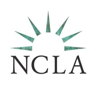 New Civil Liberties Alliance1